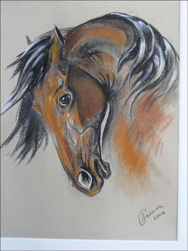 Стрелецкий конь