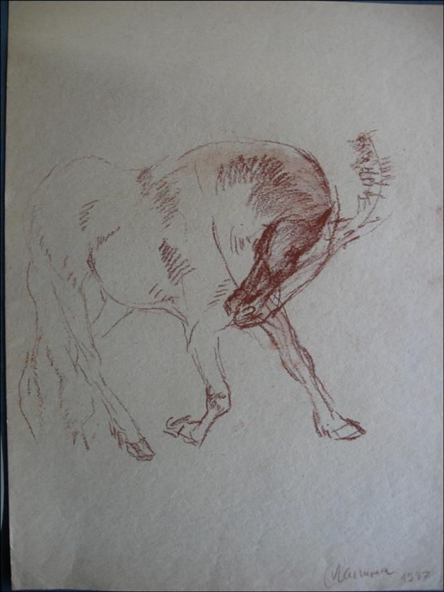 Лошадь в цирке(набросок)
