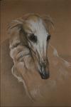 Метель (портрет)