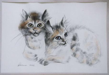 Котята на голубой бумаге